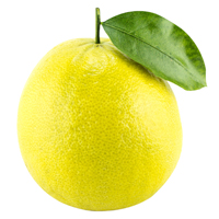 bergamot perfume ingredient
