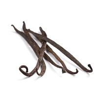 vanilla raw materials scent market