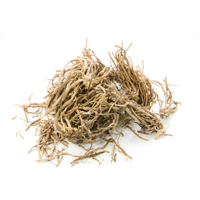 vetiver raw materials scent market